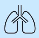 2. Respiration